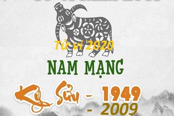 TỬ VI NAM MẠNG TUỔI KỶ SỬU NĂM 2020