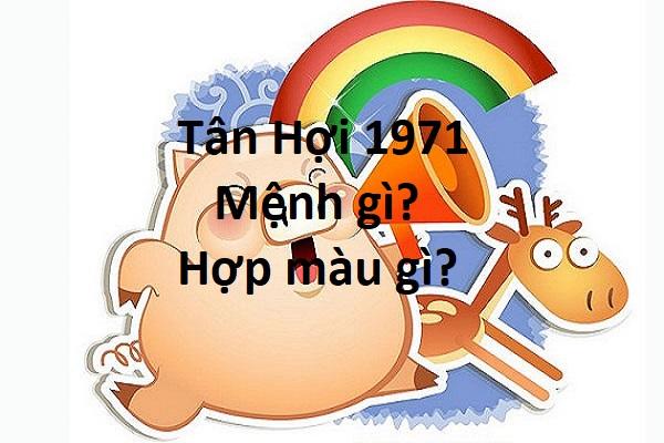 Sinh năm 1971 hợp màu gì? Tuổi Tân Hợi kỵ màu gì?
