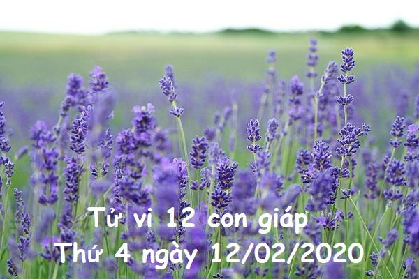 Xem tử vi Thứ 4 ngày 12/02/2020 của 12 con giáp-1