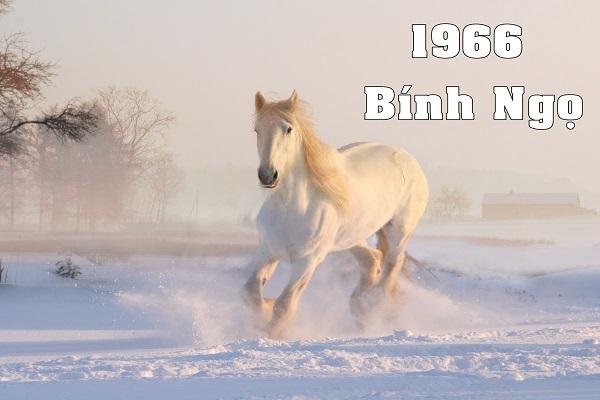 Sinh năm 1966 hợp màu gì? Tuổi Bính Ngọ kỵ màu gì?-1