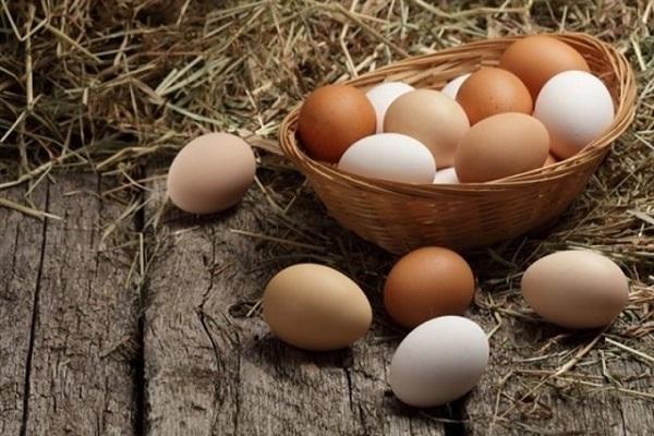 Giải mã giấc mơ thấy trứng gà đánh số gì trúng lớn?  2129282506