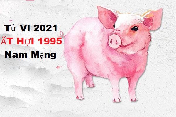 Tử vi năm 2021 tuổi ẤT HỢI sinh năm 1995 [Nam Mạng]