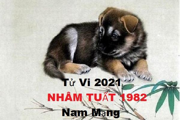 Xem tử vi năm 2021 tuổi NHÂM TUẤT sinh năm 1982 [Nam Mạng]