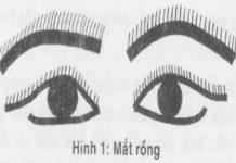 Cách nhận biết tướng mắt rồng