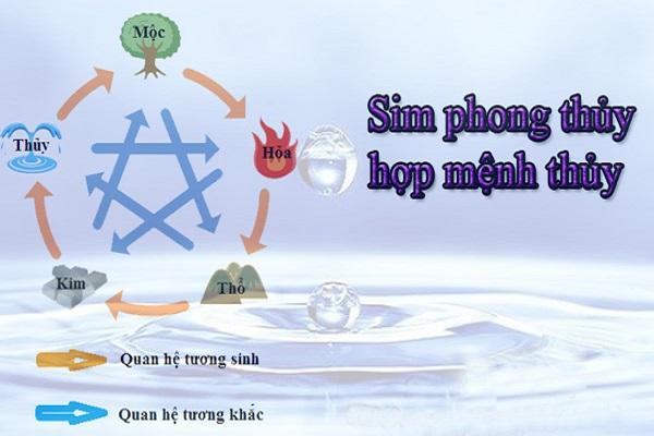 3 Cách chọn sim phong thủy hợp mệnh Thủy đón may mắn-1